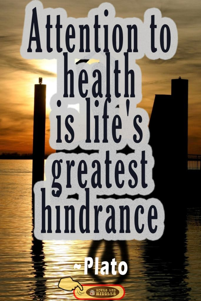 Health is Wealth Quote #3: Attention to health is life's greatest hindrance. Plato.
