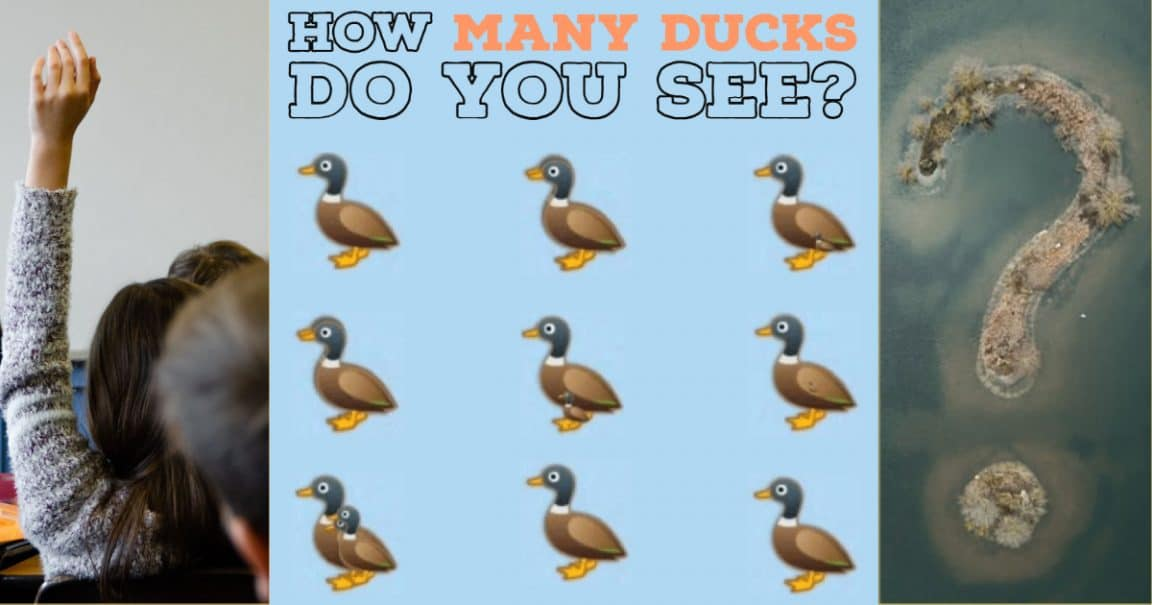 Image to the riddle: How many ducks do you see?