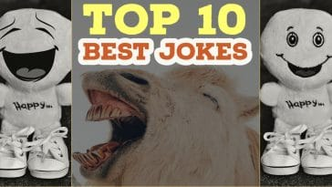 Image for Top 10 best jokes
