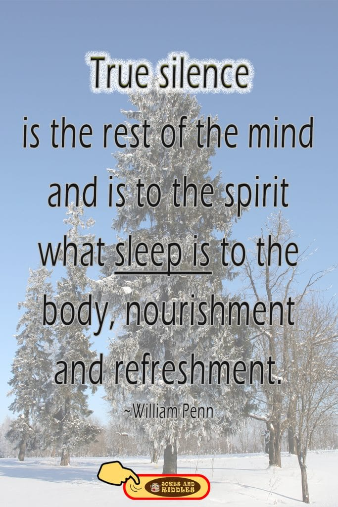 Mental health quote #1: True silence is the rest of the mind and is to the spirit what sleep is to the body, nourishment, and refreshment. William Penn.