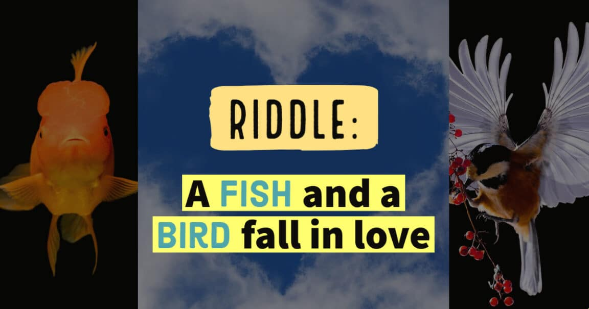 "Image to the riddle: ""A fish and a bird fall in love"""