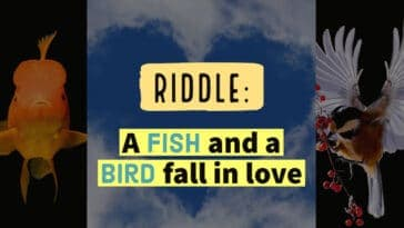 """Image to the riddle: """"A fish and a bird fall in love"""""""