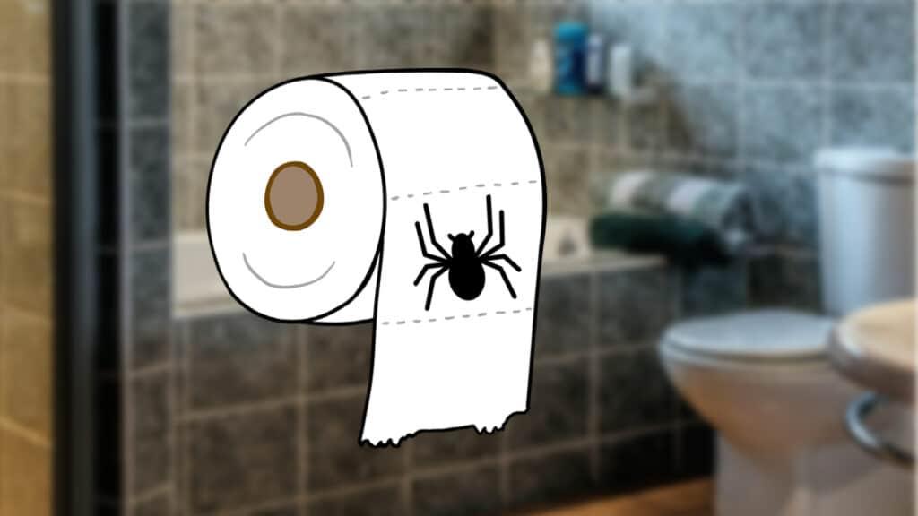 Spider Toilet paper prank